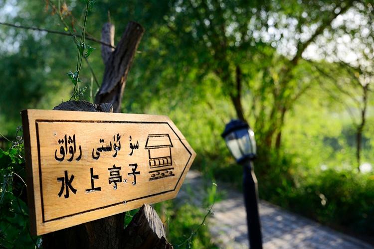 Xinjiang_DSC1217b