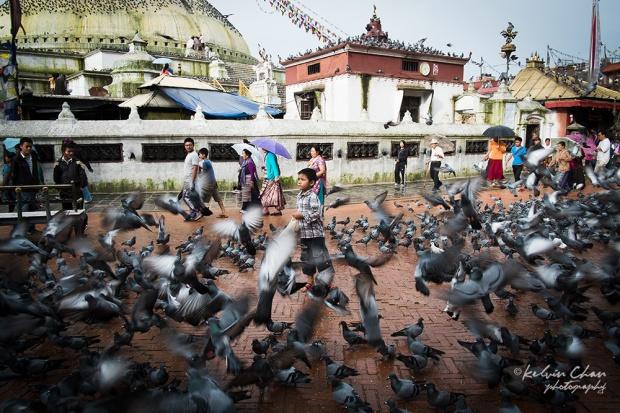 Tibet-7242
