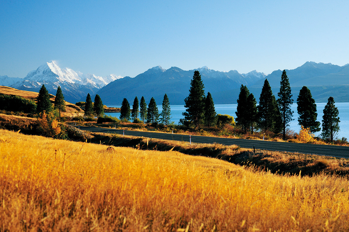 South Island New Zealand Roads