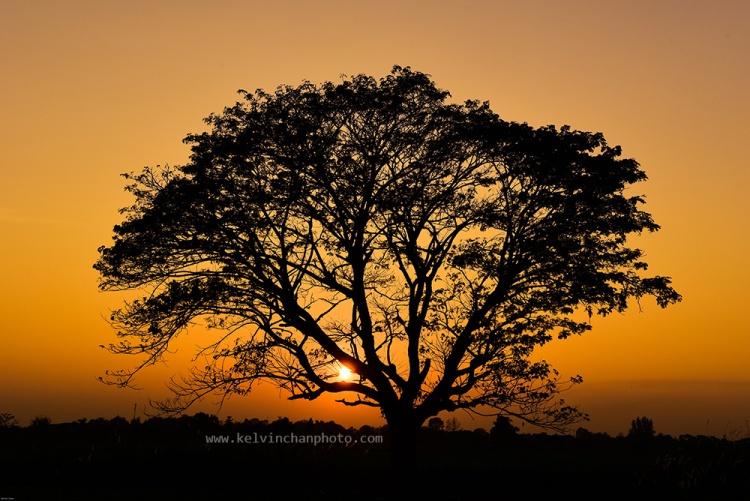 sunset on the way to sukhothai