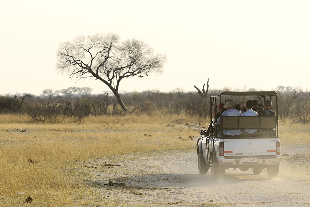 Driving into Hwange National Park