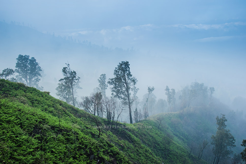 morning fog and the smoke from the crater covered the valley beside Ijen