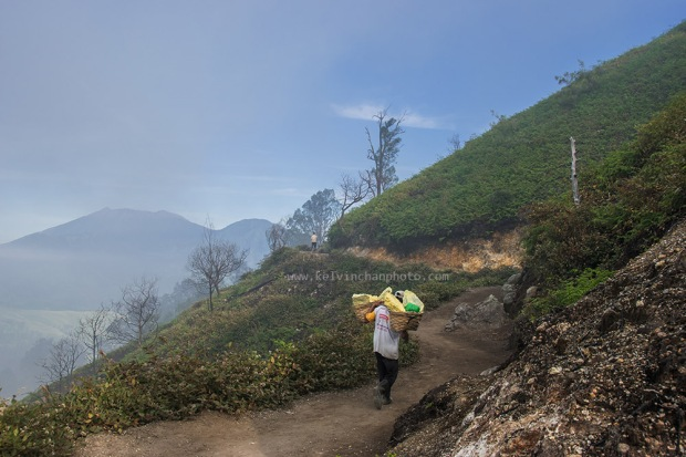 worker carrying up to 100 kg of sulphur down to the collection centre