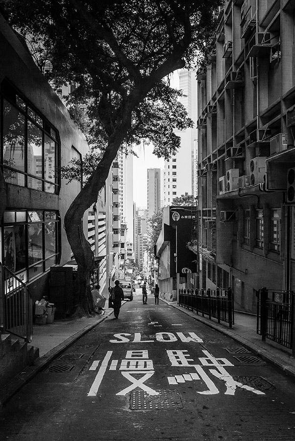 street-3206